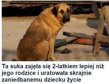 taSuka